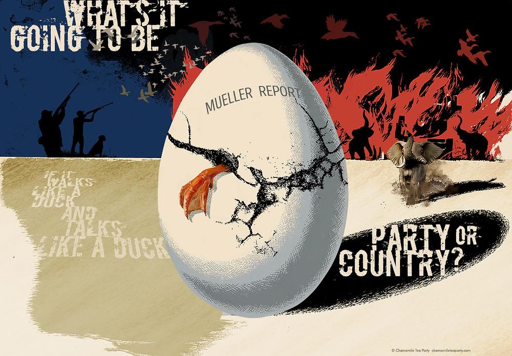 Jeffgates muellers egg Poster