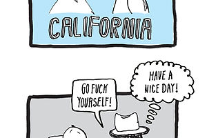 New York vs. California
