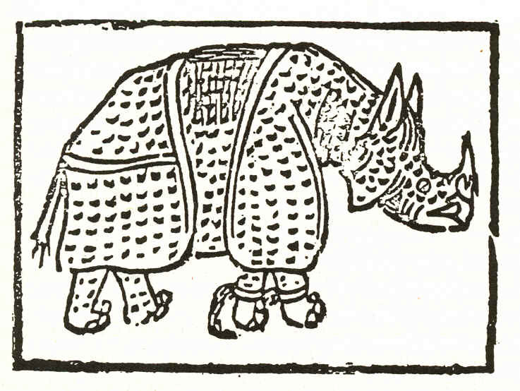 Anonymous woodcut published in 1515, on which Dürer based his rhino