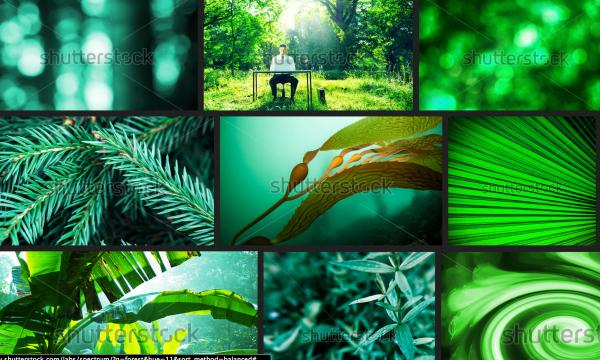 Shutterstock Spectrum