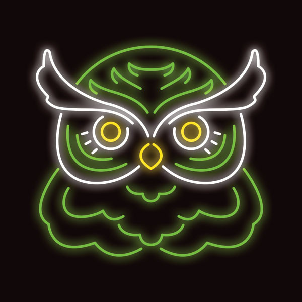 Trey-Wadsworth_Neon-Owl
