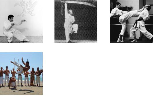 Brazilian martial Capoera