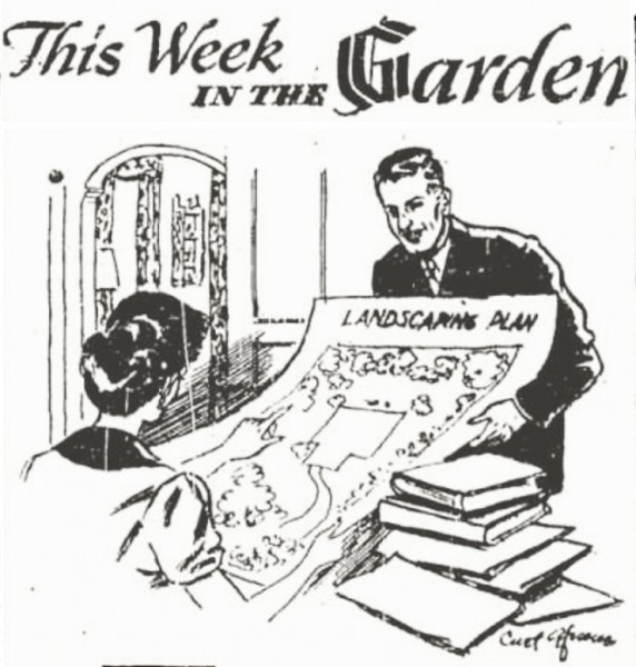 "Curt Gfroerer's masthead cartoon for the ""This Week In The Garden"" column. Gfroerer was an avid (not Aphid) gardener."