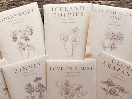 Brand of the Day: Floret's Seed Packets