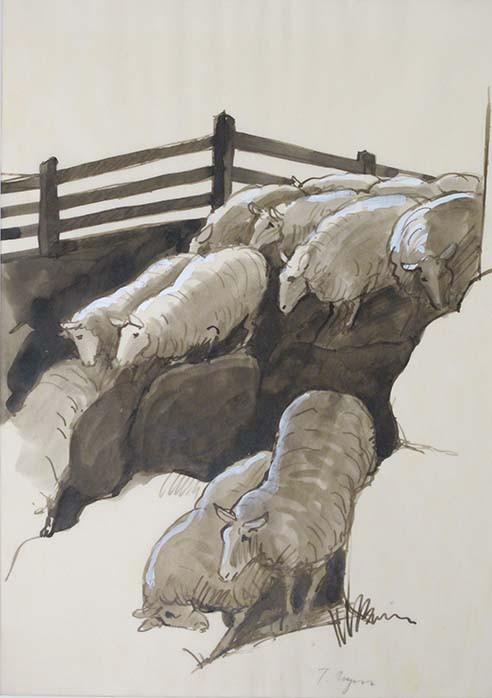 Untitled (sheeps)