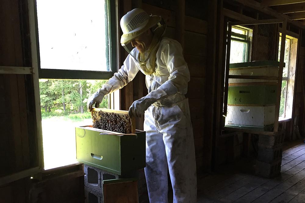 Mark_as_beekeeper