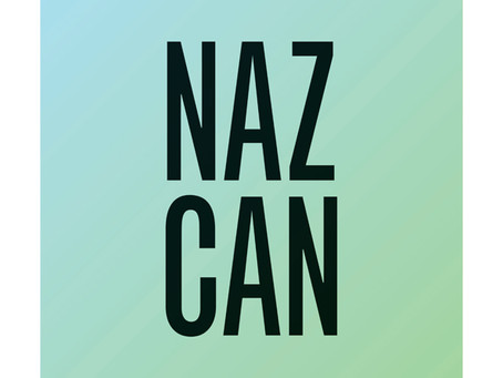 2012 New Visual Artist: Serifcan Ozcan