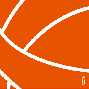 18_WNBA_SCARF_2