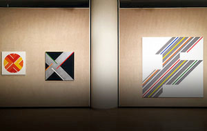 Lustig Cohen on View at The Glass House