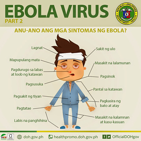 Department_of_Health_DOH_Ebola-Virus_Infographic_Poster