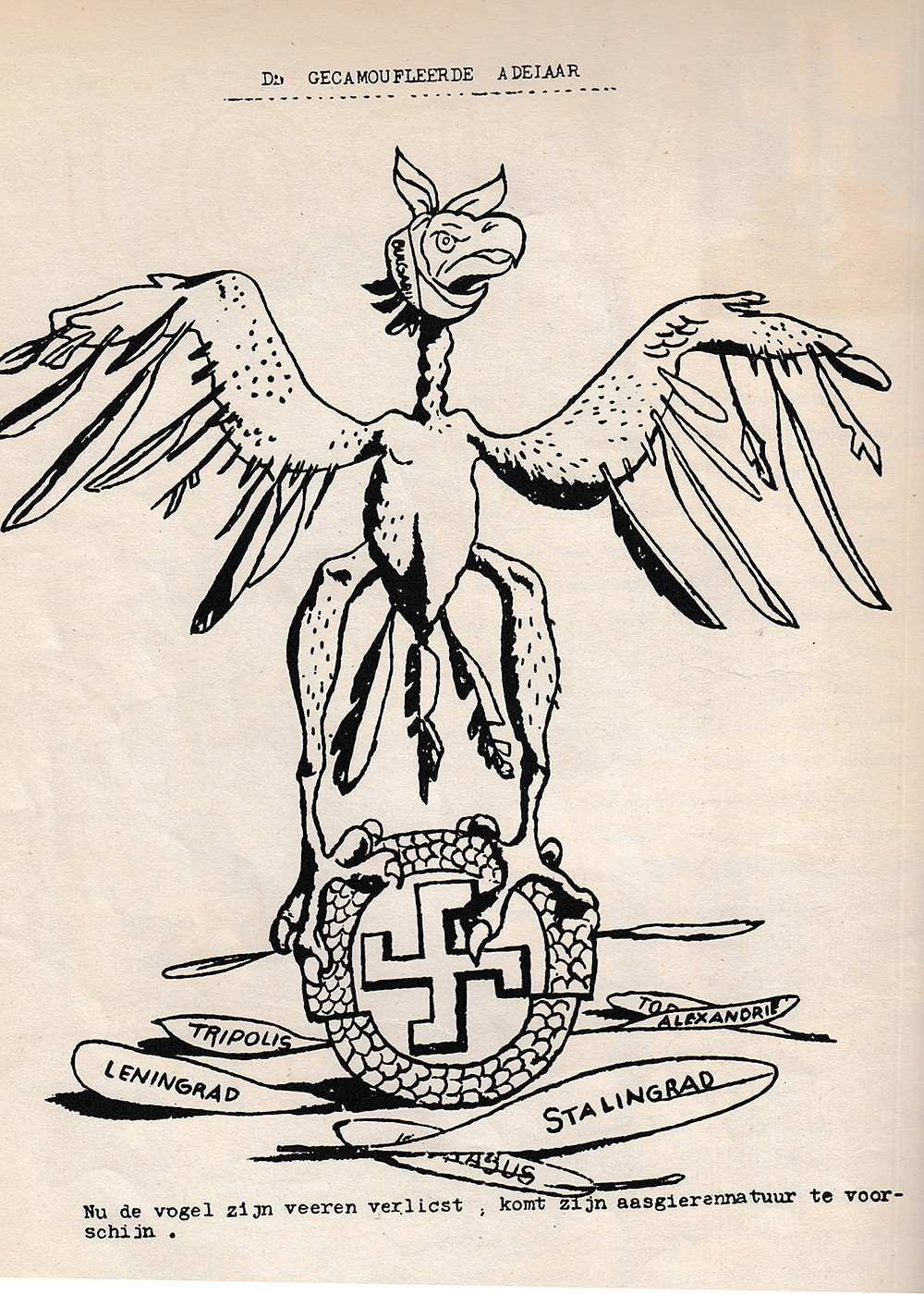 """Front page of the Dutch paper """"The Camouflaged eagle."""" """"Now that the bird [the symbol of Germany] loses its feathers, its vulturous character appears."""" Holland is occupied and the Nazis are loosing the war."""