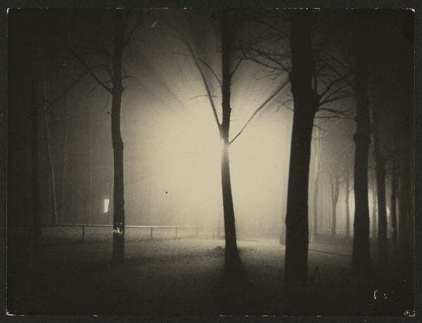 Untitled (Night View of Trees and Streetlamp, Burgkühnauer Allee, Dessau), 1928. Gelatin silver print, 6 15/16 x 9 5/16 in. Credit: gift of T. Lux Feininger, Houghton Library, Harvard University. © Artists Rights Society, New York / VG Bild-Kunst, Bonn.