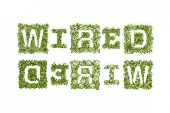 "Hand-drawn ""Wired Growing Logo"" for Wired U.K.'s masthead."