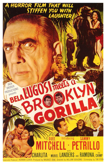 Brooklyn gorilla