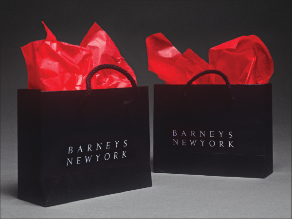 Barneys new york bags