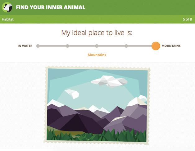 wwf-fyia-culbreth-interactive-designer