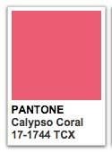 calypso-coral