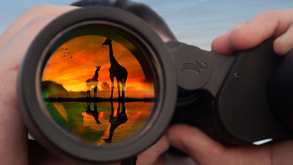 Animal Planet Binoculars
