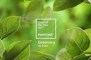 Pantone's 2017 Color of the Year: Greenery!