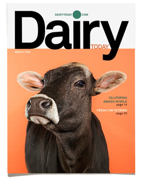 DairyToday4