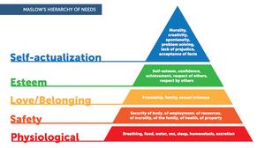 Maslow's Hierarchy[1]