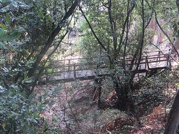 84_Aug23_Bridge.jpg