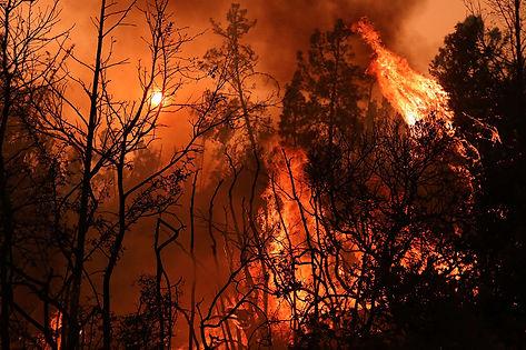 bigfire.jpg