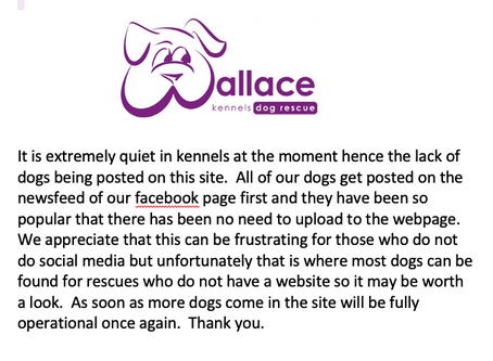 Information regarding new dogs:-