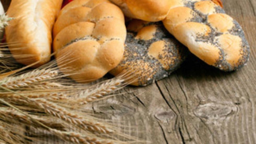 Organic Wheat (1.70 lb)