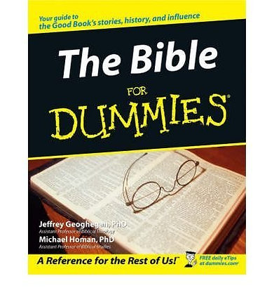 Thebible For Dummies By Homan, Michael M. ( Author ) On Jul-02-2001, Paperback