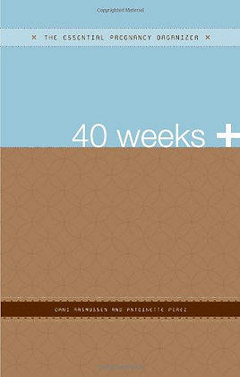 40 Weeks +: The Essential Pregnancy Organizer (The Essential Organizers)