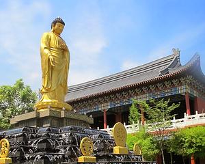 Ming Palace Shah Alam