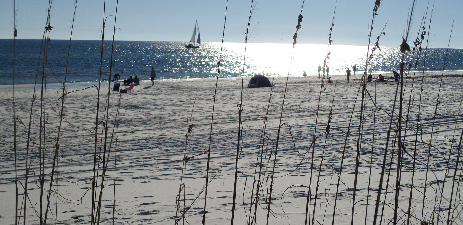 Beautiful sunny day on the beach!