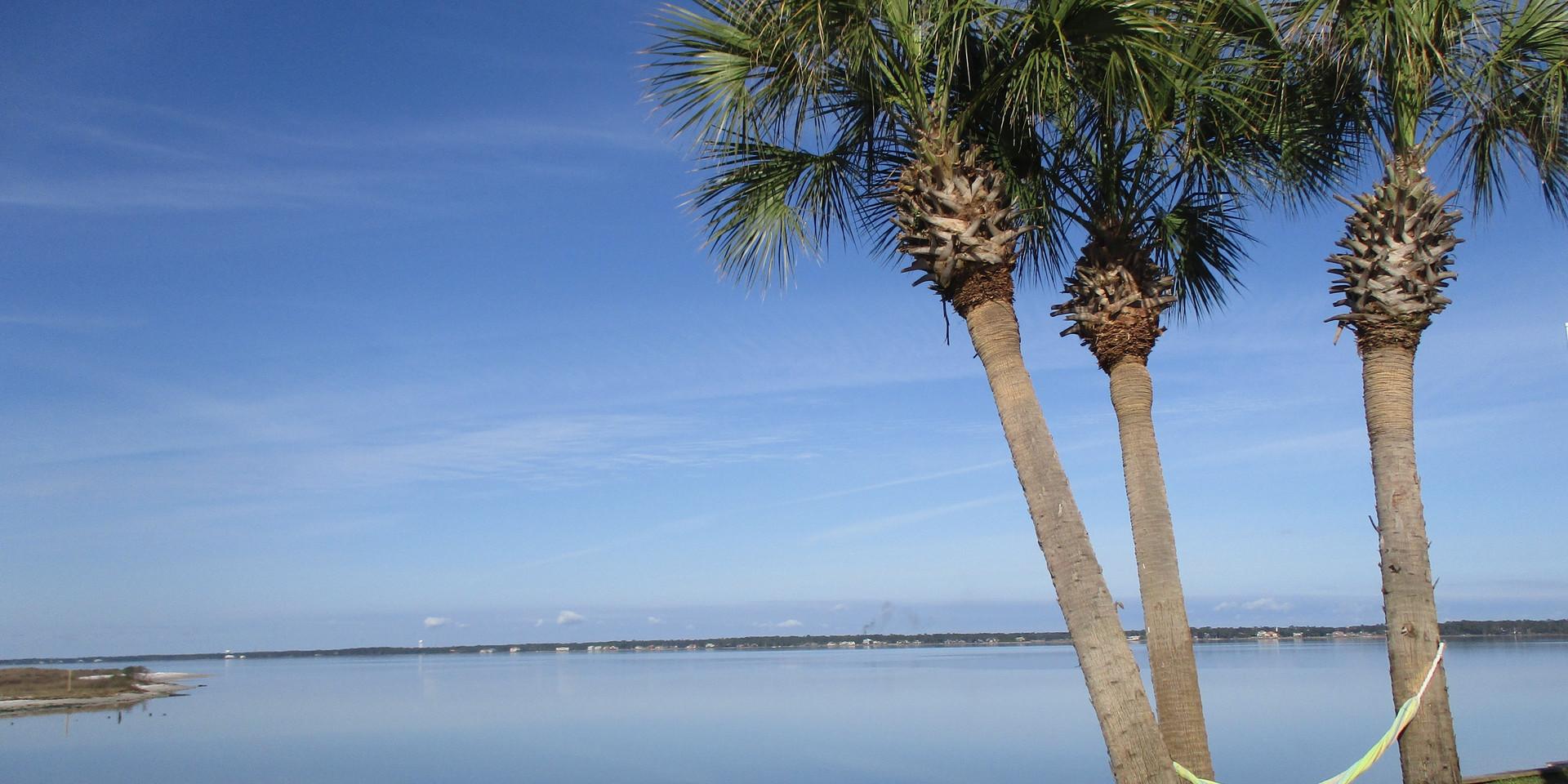 Palms of Sunset Harbor