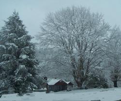 Historic Log Cabin Homestead