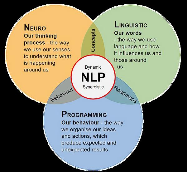 What is NLP Diagram (c) 2015 by Klaus Bockholt