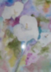 TAKISHA'S CALLA LILIES.jpg