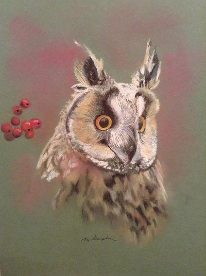 WISE OLD OWL.jpg