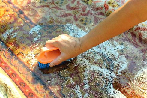 Hand wash the carpet. Carpet washing man