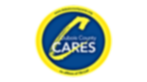 CARES-2018_UPDATE_Logo.png