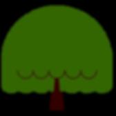 Tree 5