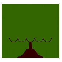 Baum-5