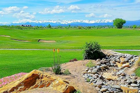 Golf Course Color.jpg