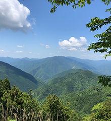 熊野の森再生