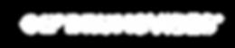 SAF AQUA Drums Vibes LOGO R biale-01.png