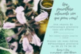 Réflexologie plantaire, alencon