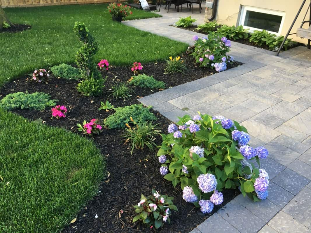 Landscaping and Planting