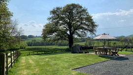 Large, lawned garden
