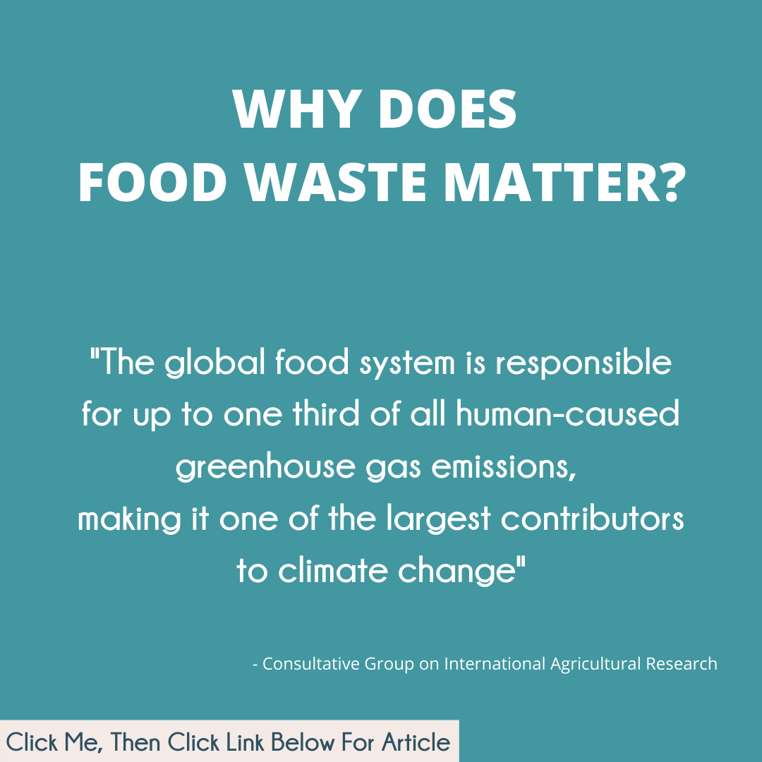 Why Does Food Waste Matter.png