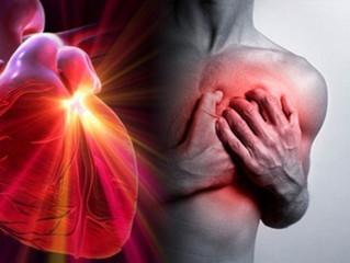 Endurecimiento de las arterias | Hardening of the arteries